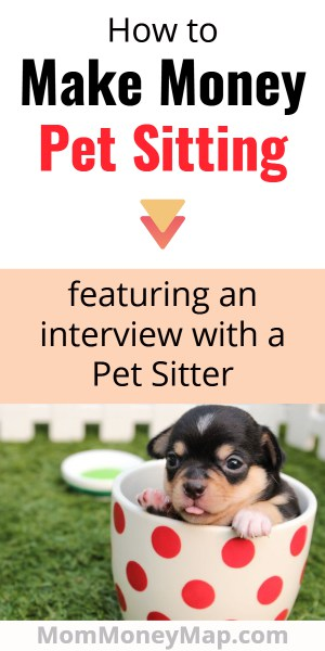 How to become a dog sitter/walker